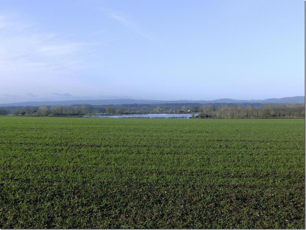 Farmland 2